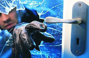 Rodych seguridad anti robos en casa